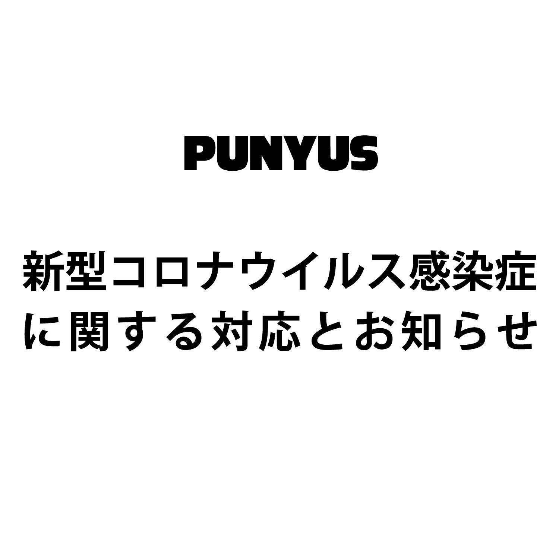 PUNYUS